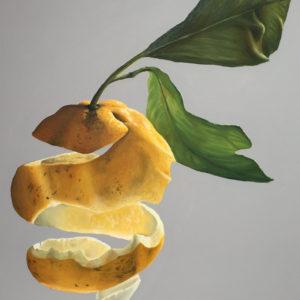Limone svuotato